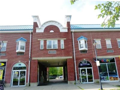 Piermont NY Condo/Townhouse For Sale: $124,900