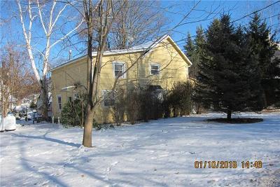Ellenville Single Family Home For Sale: 1 Green Acres Court