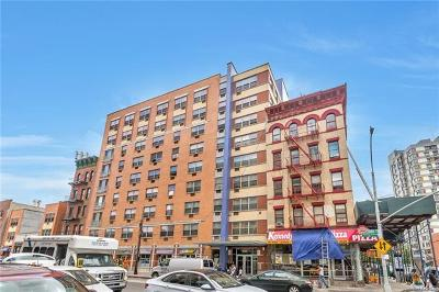 Bronx County Condo/Townhouse For Sale: 3044 3rd Avenue #3B