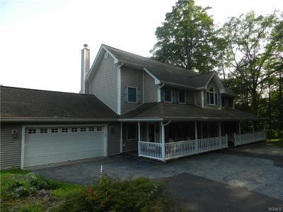 Dover Plains Single Family Home For Sale: 74 Glen Avenue