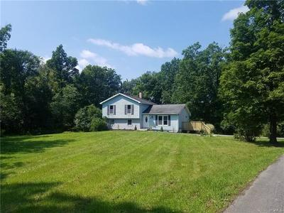 Newburgh Single Family Home For Sale: 29 Travis Lane