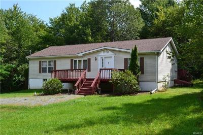 Swan Lake NY Single Family Home For Sale: $192,000