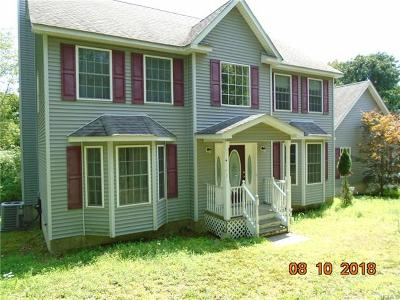 Port Jervis Single Family Home For Sale: 908 Mountain Road