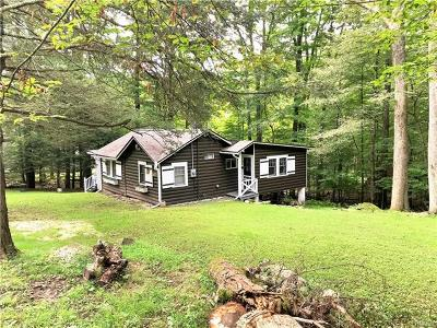 Single Family Home For Sale: 91 West Sullivan Place
