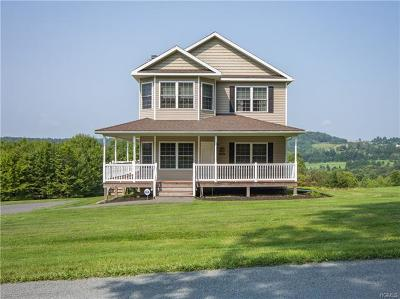 Callicoon, Callicoon Center Single Family Home For Sale: 105 Polster Road