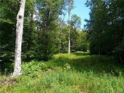 Livingston Manor NY Residential Lots & Land For Sale: $150,000