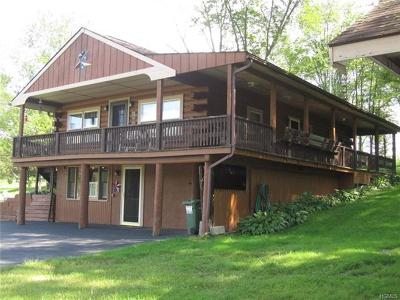 Wallkill Single Family Home For Sale: 9 Low Road