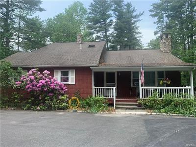 Highland Lake NY Single Family Home For Sale: $364,000