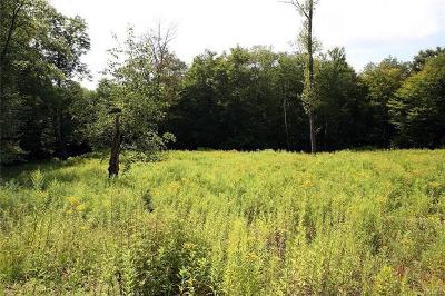 Delaware County Residential Lots & Land For Sale: Hungry Hill Road