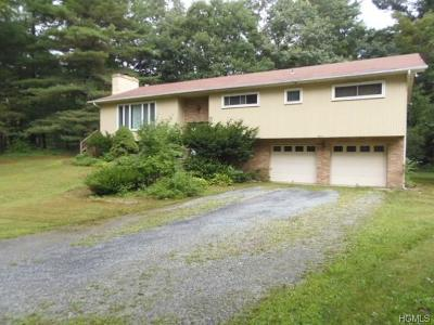 Hyde Park Single Family Home For Sale: 11 Spruce Road
