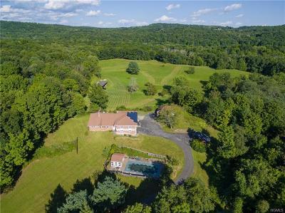 Rhinebeck Single Family Home For Sale: 491 Wurtemburg Road