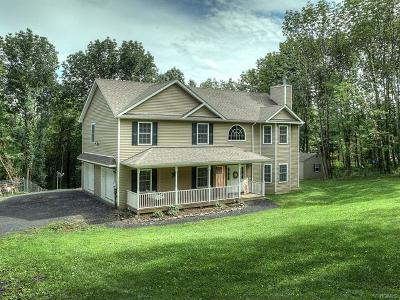 Port Jervis Single Family Home For Sale: 1299 Greenville Turnpike