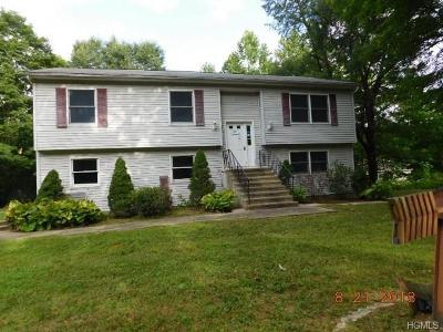 Port Jervis Single Family Home For Sale: 27 Black Rock Trail