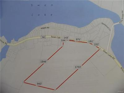 Orange County, Sullivan County, Ulster County Residential Lots & Land For Sale: Briscoe Road