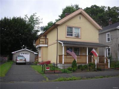 Port Jervis Single Family Home For Sale: 123 Hammond Street