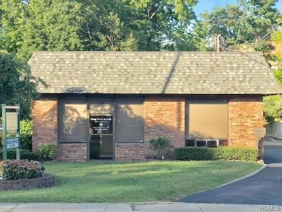 Stony Point Commercial For Sale: 43 South Liberty Drive