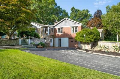 Dover Plains Single Family Home For Sale: 10 Anderson Road