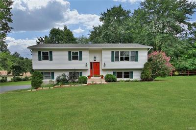 Single Family Home For Sale: 179 New Hempstead Road