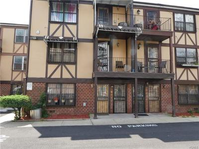 Bronx County Condo/Townhouse For Sale: 825 East 161st Street #A