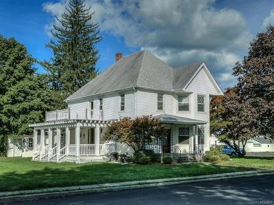 Pine Bush Single Family Home For Sale: 65 Center Street