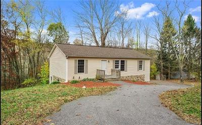 Wassaic Single Family Home For Sale: 338 Bog Hollow Road