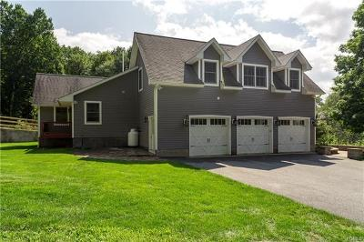 Dutchess County Single Family Home For Sale: 600 Clinton Hollow Road