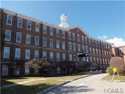 Peekskill Condo/Townhouse For Sale: 4413 Villa At The Woods