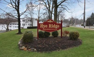 Rye Brook Condo/Townhouse For Sale: 15 Avon Circle #D