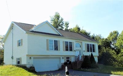 Liberty NY Single Family Home For Sale: $198,500