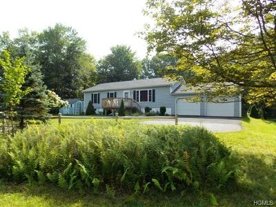 Liberty NY Single Family Home Sold: $135,000