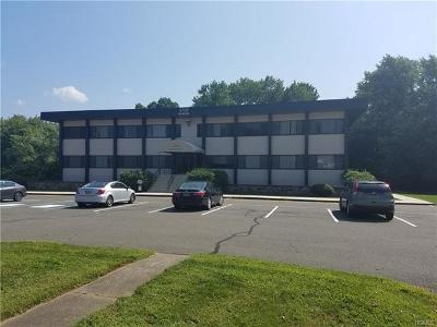 New City Commercial For Sale: 130 North Main Street