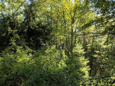 Residential Lots & Land For Sale: 51 Old Plank Road