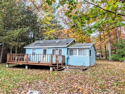 Glen Spey Single Family Home For Sale: 31 Minisink Trail