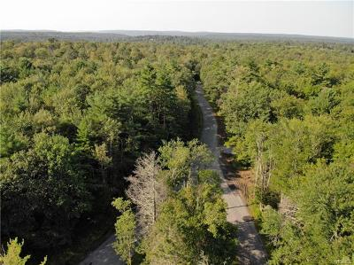 Forestburgh Residential Lots & Land For Sale: South French Clearing