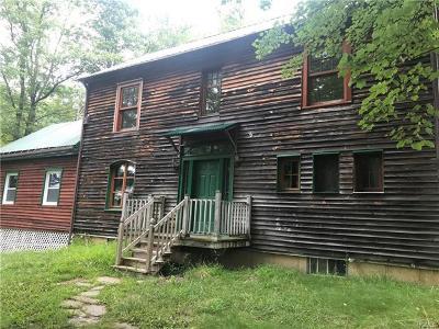 Orange County, Sullivan County, Ulster County Rental For Rent: 240 Fosler Road