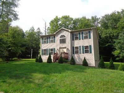 Rock Hill NY Single Family Home For Sale: $214,900