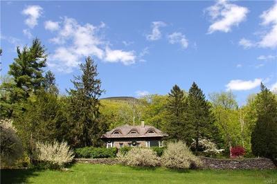 Shandaken Single Family Home For Sale: 575 Plank Road