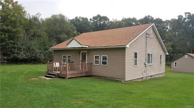 Wurtsboro Single Family Home For Sale: 338 County Route 56