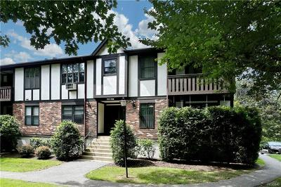 Rockland County Condo/Townhouse For Sale: 759 Sierra Vista Lane