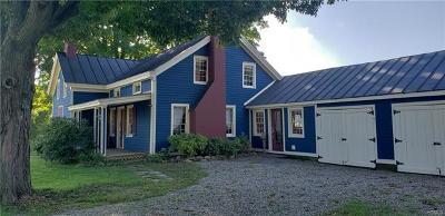 Warwick Single Family Home For Sale: 38 Little Brooklyn Road