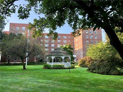 New Rochelle Rental For Rent: 230 Pelham Road #5D