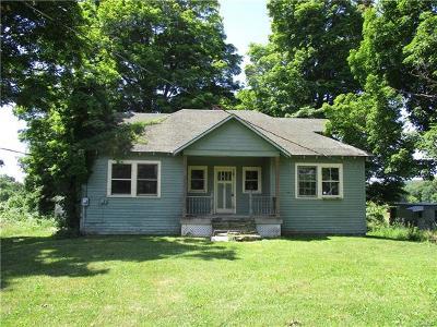 Lake Katrine Single Family Home For Sale: 97 Bogerts Lane