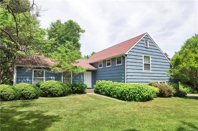 Westchester County Single Family Home For Sale: 19 Turtle Pond Lane