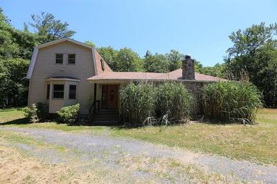Pine Bush Single Family Home For Sale: 594 Upper Mountain Road