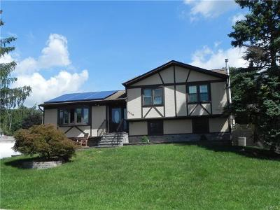 Washingtonville Single Family Home For Sale: 4 Valley Forge Way