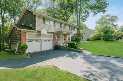 Rye Brook Single Family Home For Sale: 221 Country Ridge Drive