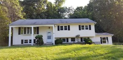 New Windsor Single Family Home For Sale: 30 Continental Drive