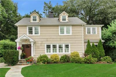 Hartsdale Single Family Home For Sale: 19 Lewis Avenue