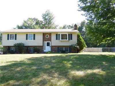 Wallkill Single Family Home For Sale: 57 Birch Road