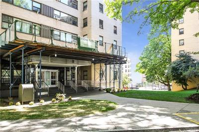 Co-Operative For Sale: 8 Fordham Hill Oval #1C